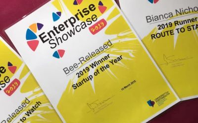 Bee-Released Counselling wins Enterprise Showcase Startup of the Year